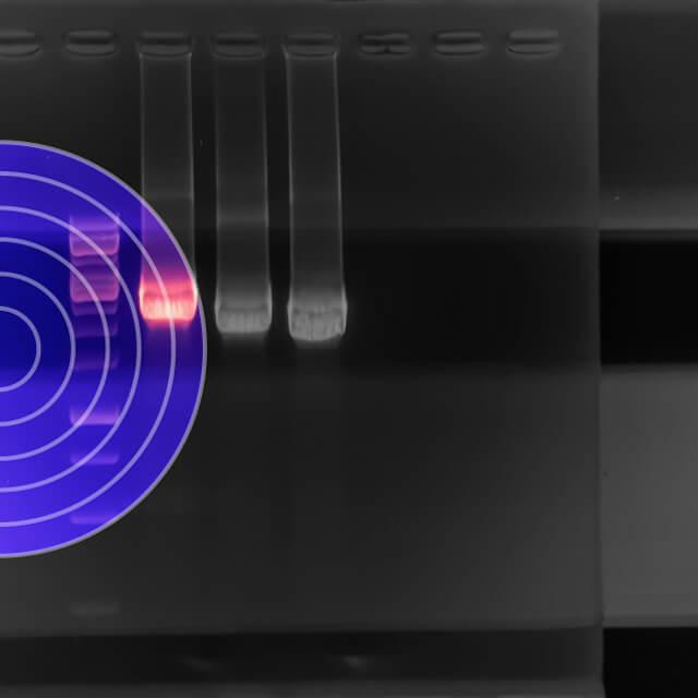 Genotyping Kits